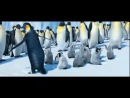 Пингвины танцуют по-марийски
